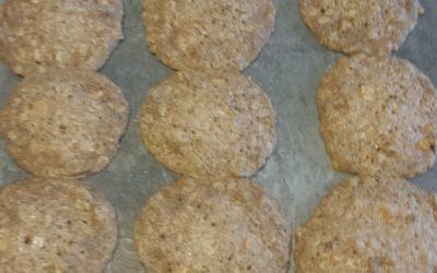 80's Recipe Test–Oatmeal Chews